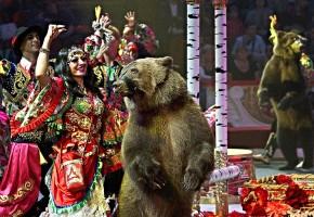 Цыгане с медведем на праздник